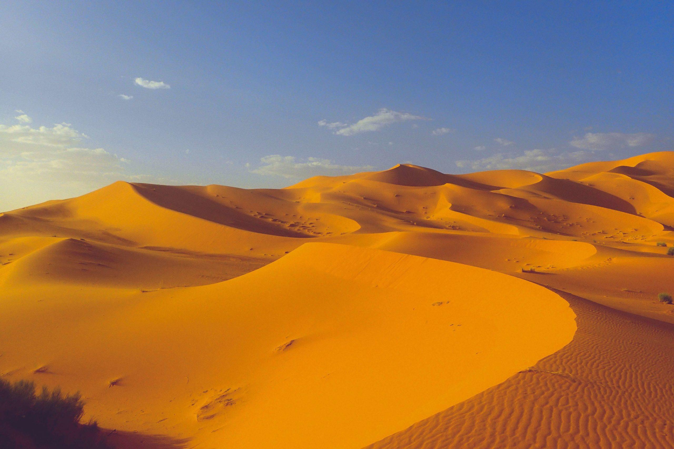 サハラ砂漠 1人